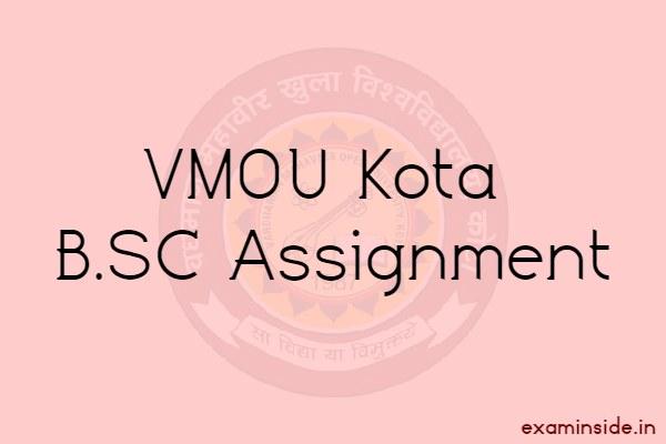 vmou bsc assignment 2021